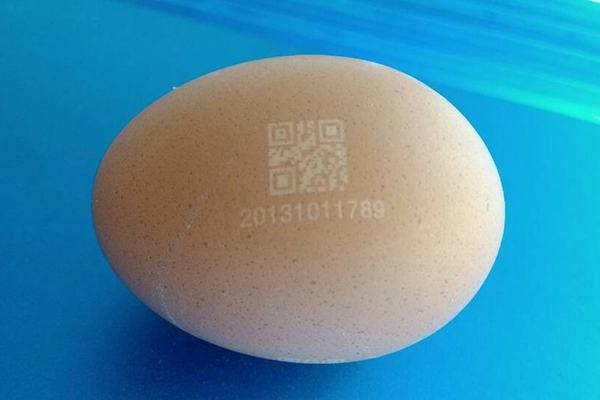 Eggs laser marking qr code production date