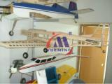 Finished Model Plane